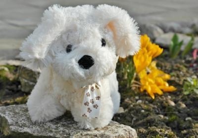Spielzeug Roboterhund